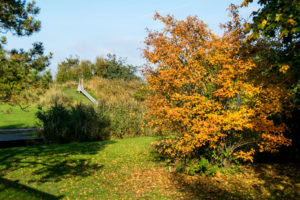 20151019_151658-Hohenfelde